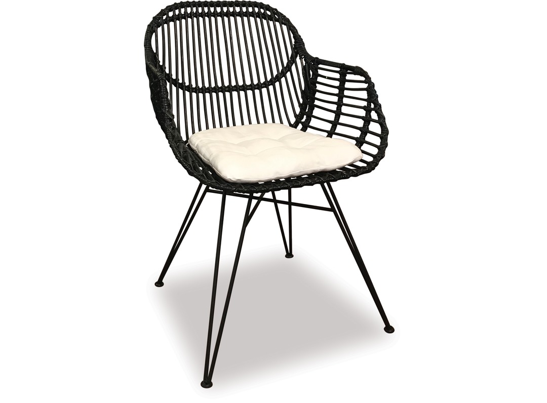 Picture of: Alfresco Deia Rattan Dining Chair